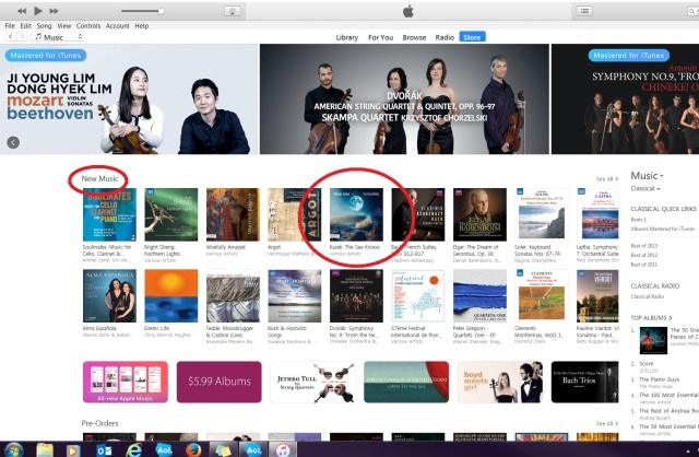 iTunes New Music Sea Knows